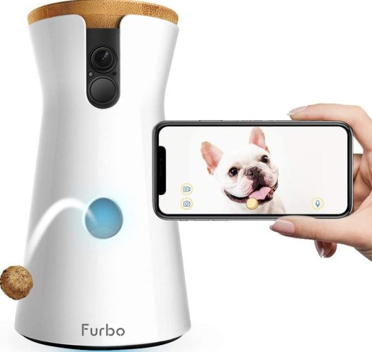 Best Pet Gadgets 2020   Android Central 14