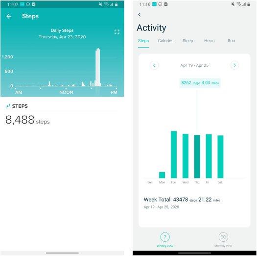 Steps Fitbit Wyze