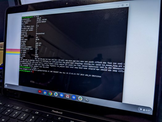 Linux on the Pixelbook Go