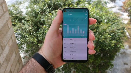 Fitbit App Steps
