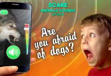 Scare animals sounds prank APK 1.1