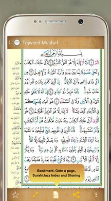 Read Holy Quran Apk 2