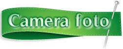 camera Allview Viper L Review