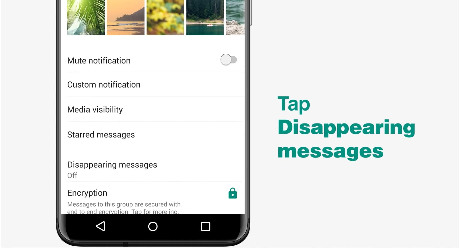 Download Latest WhatsApp APK