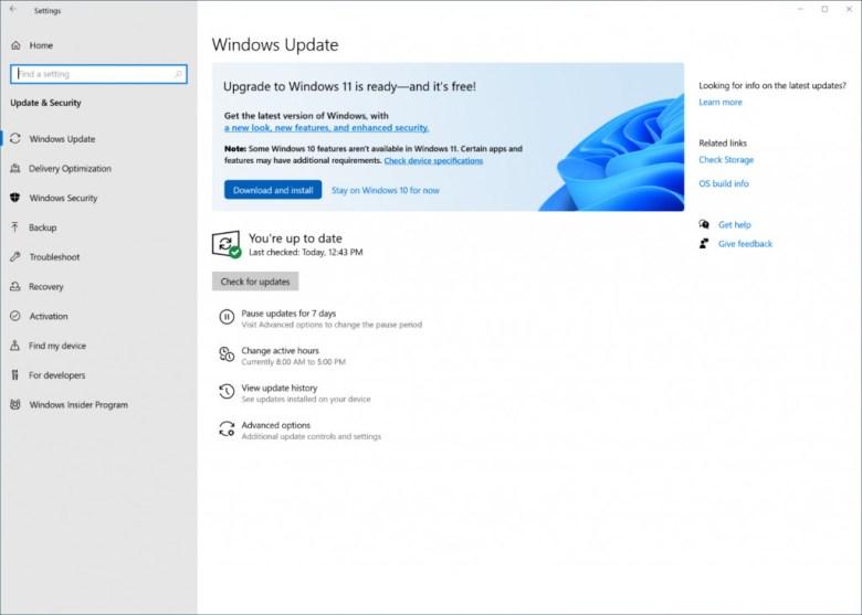 Windows 11 update hitting Windows 10 devices