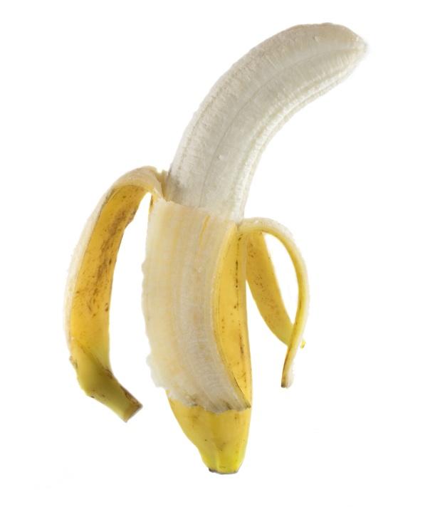 curvatura ventrale pene