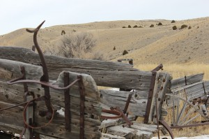 Near & Far - Far -- Shallow Depth of Field -- Bannack