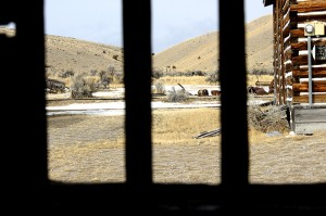 Andy Bell - The Gallows - Bannack