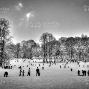 Reigate Priory Park in Winter