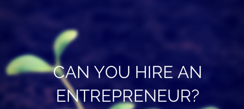 should you hire an entrepreneur