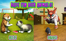 Cat Frenzy 3D Android App For PC / Cat Frenzy 3D On PC