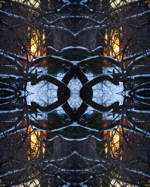 Cyberspace and identity sherry turkle essay