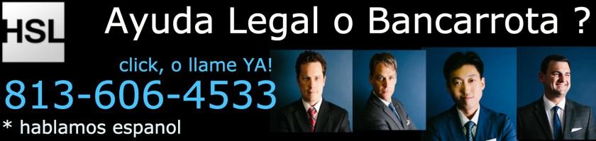 Legal Help & Bankruptcy. 813.606.4533