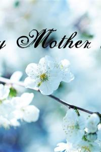 To All the Mothers…