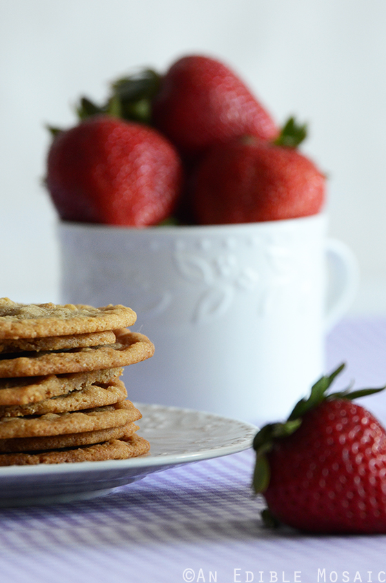 Thin and Chewy Graham Cracker Crumb Cookies