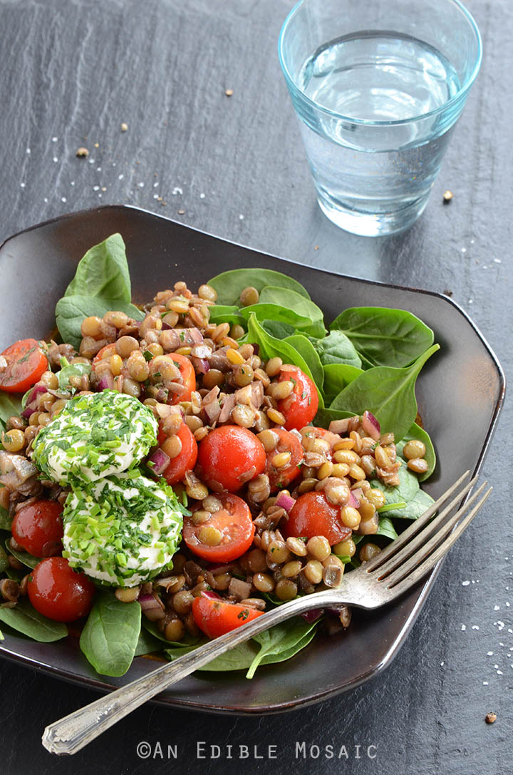 Lentil Salad with Herbed Goat Cheese and Balsamic Vinaigrette 2