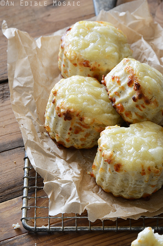 Savory Thyme and Swiss Cheese Scones 2