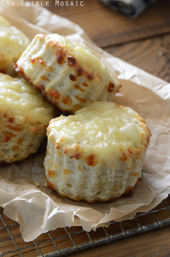 Savory Thyme and Swiss Cheese Scones 3