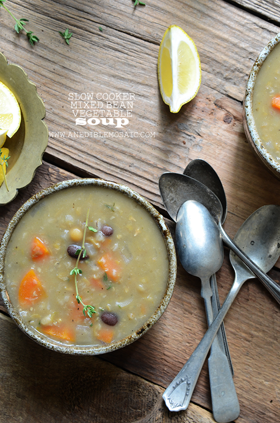 Slow Cooker Mixed Bean Vegetable Soup