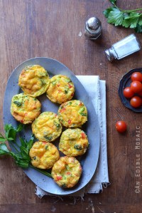 Broccoli and Red Pepper Egg Muffins {Gluten-Free; Lactose-Free}