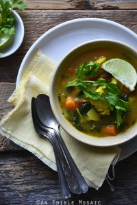 Thai-Inspired Chicken and Vegetable Detox Soup {Paleo}