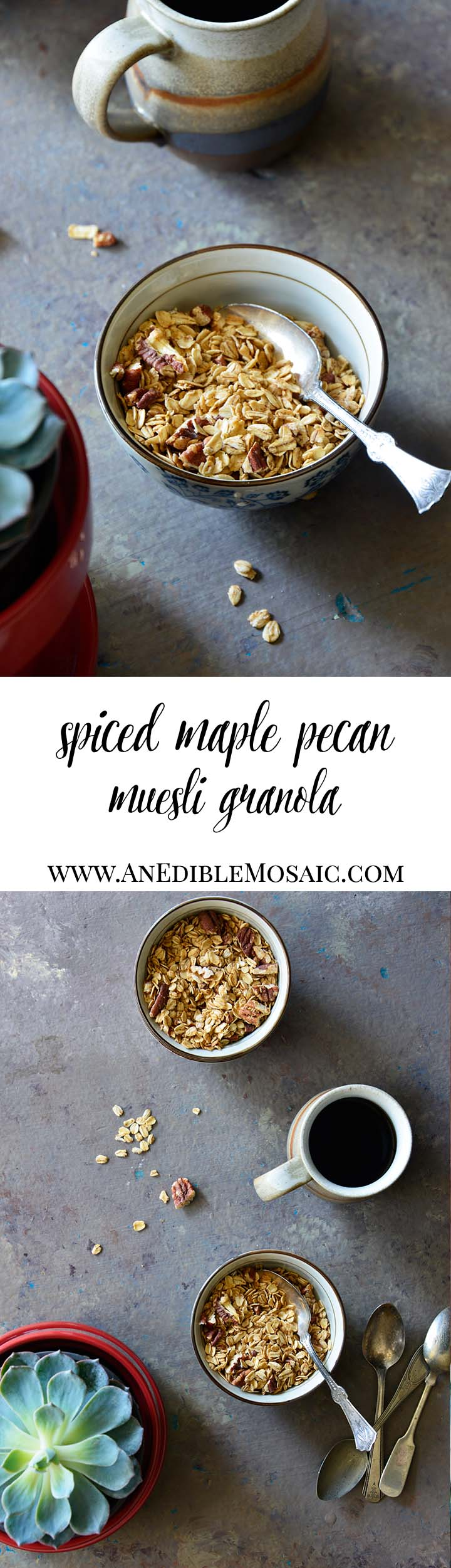 Spiced Maple Pecan Muesli Granola Long Pin
