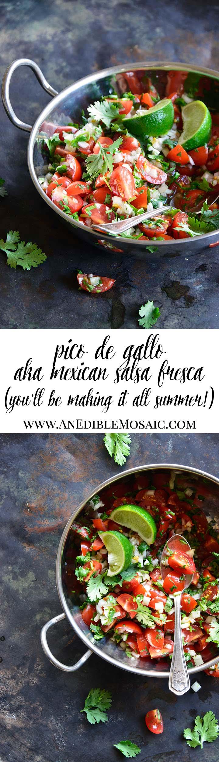 Pico de Gallo (Mexican Fresh Salsa) Long Pin