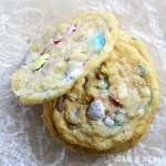 Close Up of Easter Cookies with Robin Eggs Candy and Toasted Coconut on Crinkled Wax Paper