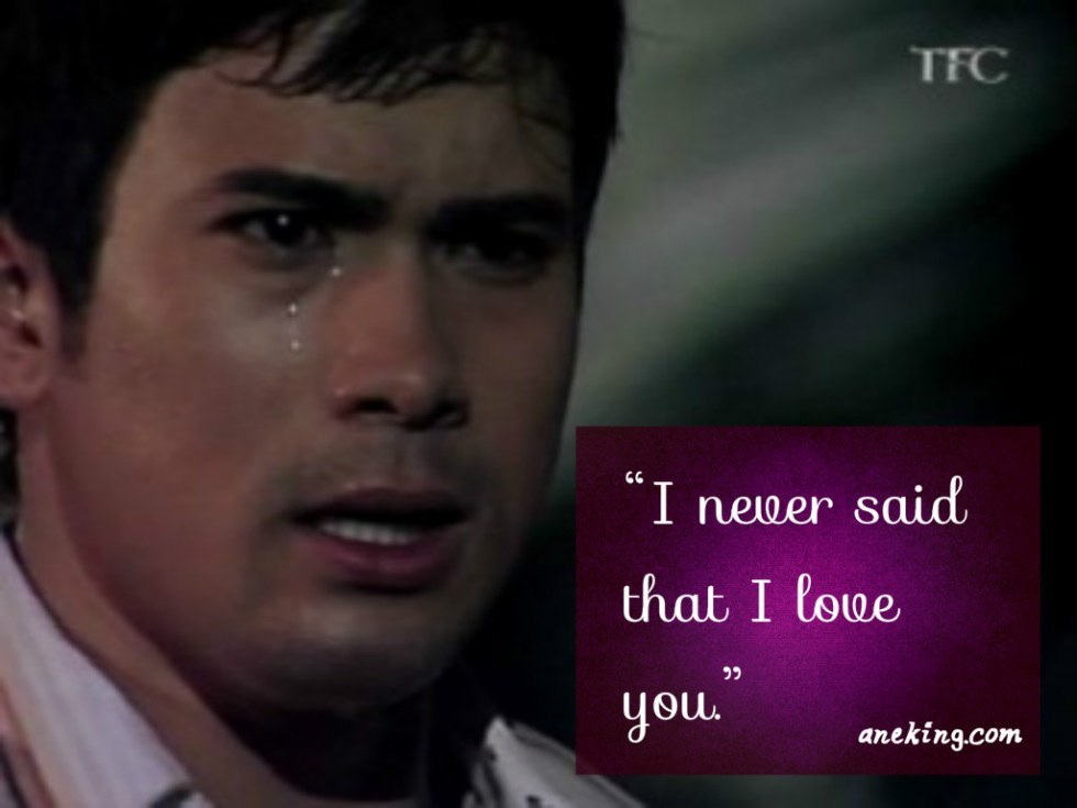 sam milby i never said that i love you