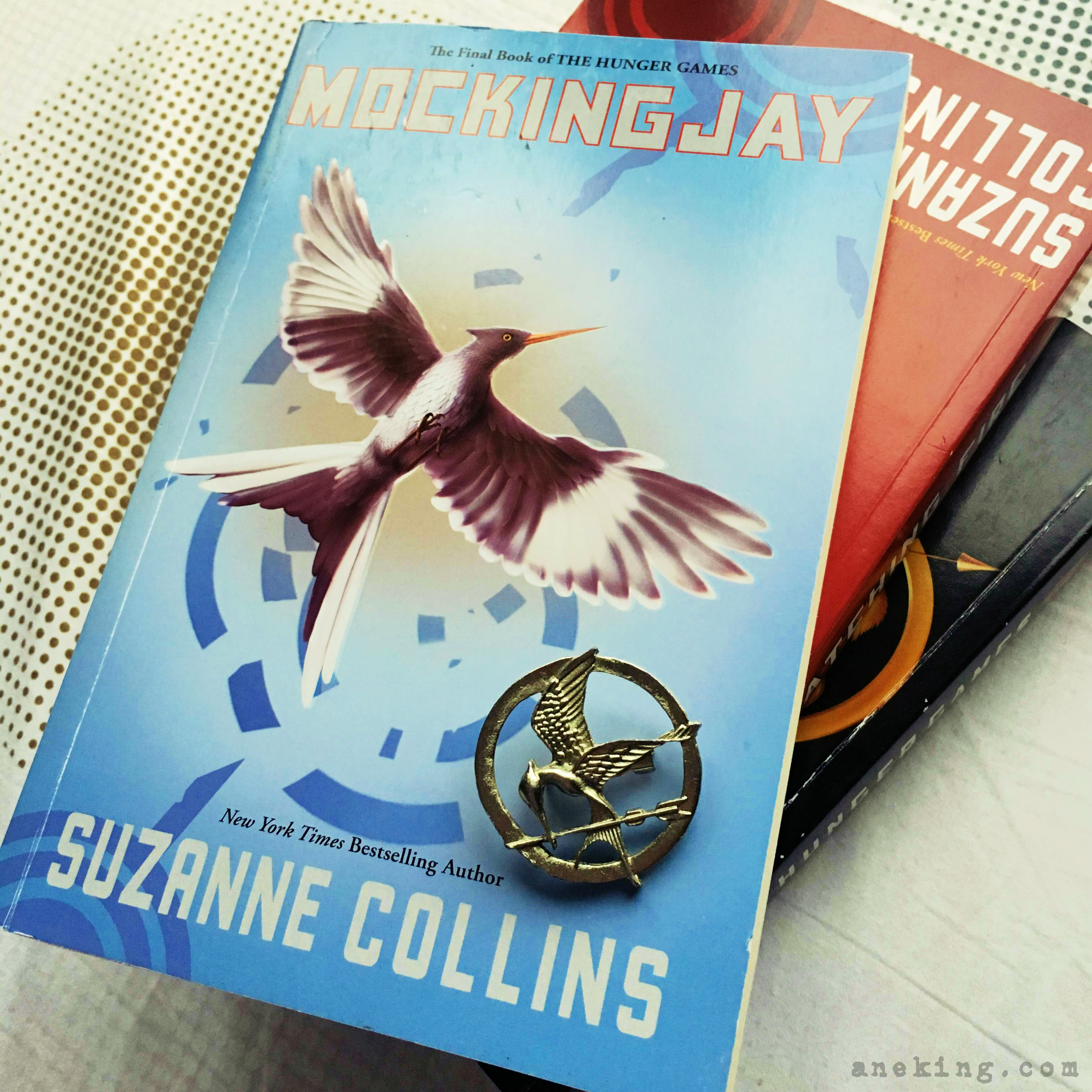 hunger games book review The hunger games combines elements of an intense survival adventure with a story of friendship and love but the book is more than a page-turner with a strong, appealing heroine but the book is more than a page-turner with a strong, appealing heroine.