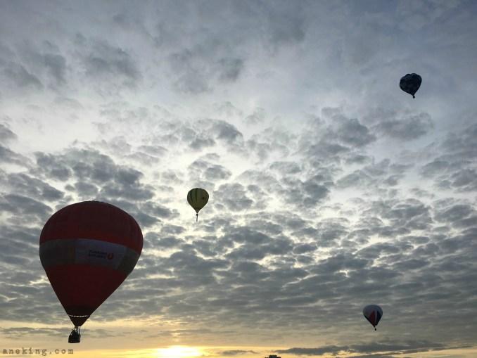 21st hot air balloon festival 9