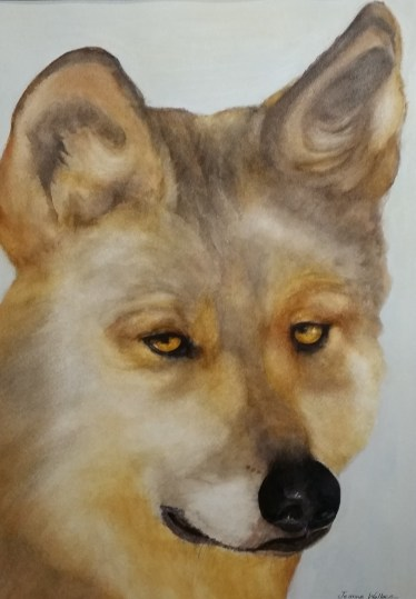 """Mexican Gray Wolf"" by Jeanne Wallace"