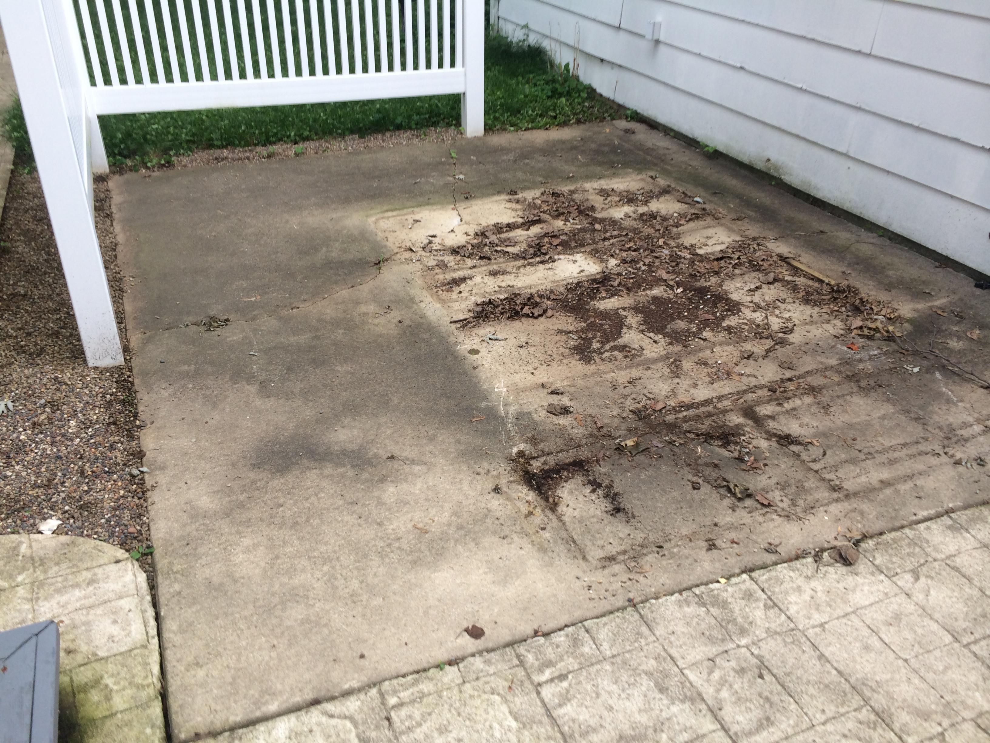concrete washing sealing anew