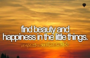 Bucket List - Find the Beauty