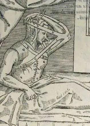 1210-7.jpg