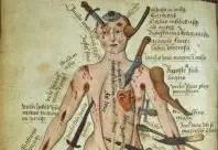 Tratado médico medieval