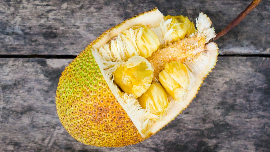 Fruta del árbol de Yaca, el fruto más grande del mundo.