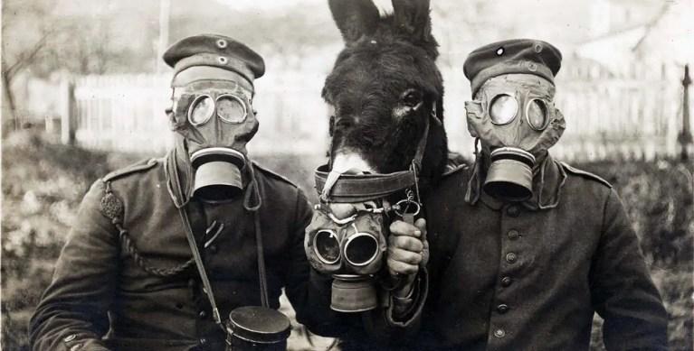 La historia de las máscaras de gas, su origen y evolución
