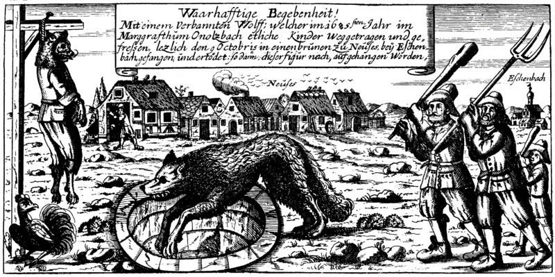 Lobo de Ansbach.