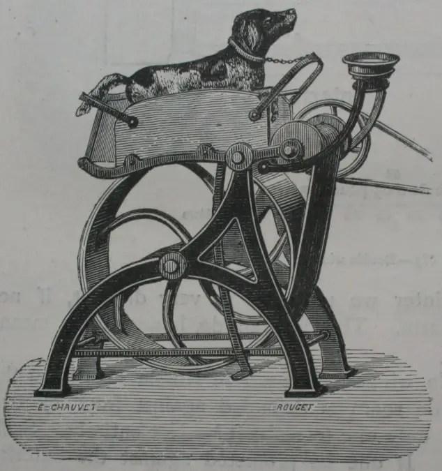 Ilustración antigua de un perro de trabajo.
