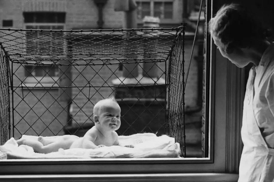 Fotografía de un bebé colgando de una ventana.