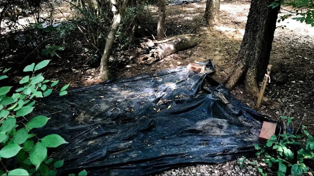 Uno de los cuerpos a investigar, tapado con plástico para acelerar su descomposición.