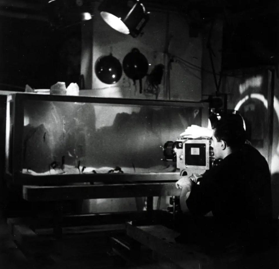 Jean Painlevé filmando una escena submarina en una pecera.