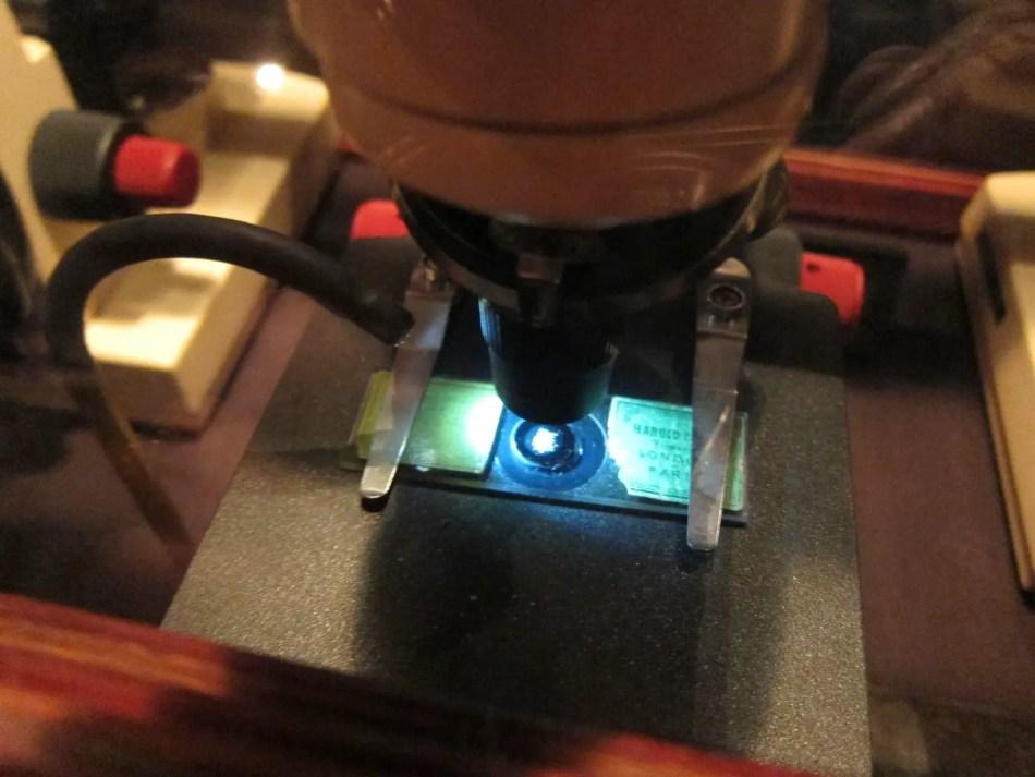 Placa microscópica conteniendo uno de los varios mosaicos de Dalton.
