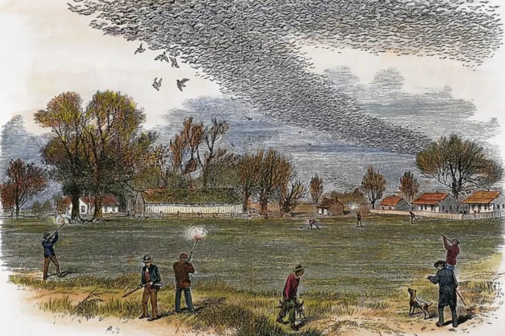 Ilustración de un grupo de cazadores furtivos y sus perros.