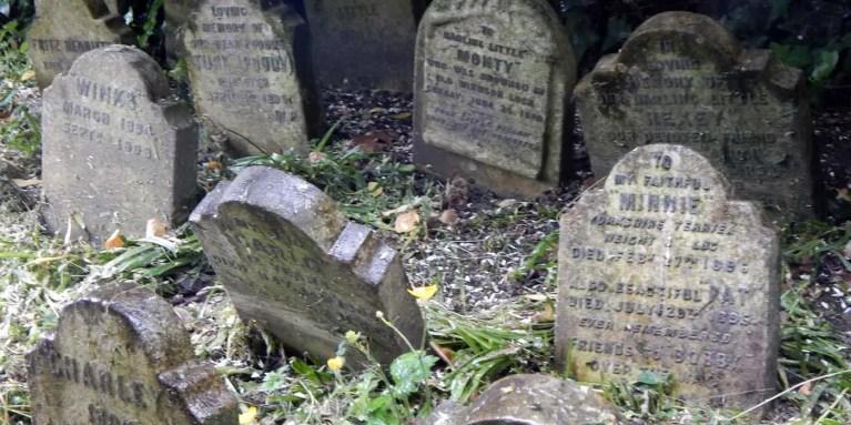 Un cementerio de mascotas victoriano oculto en el Hyde Park de Londres