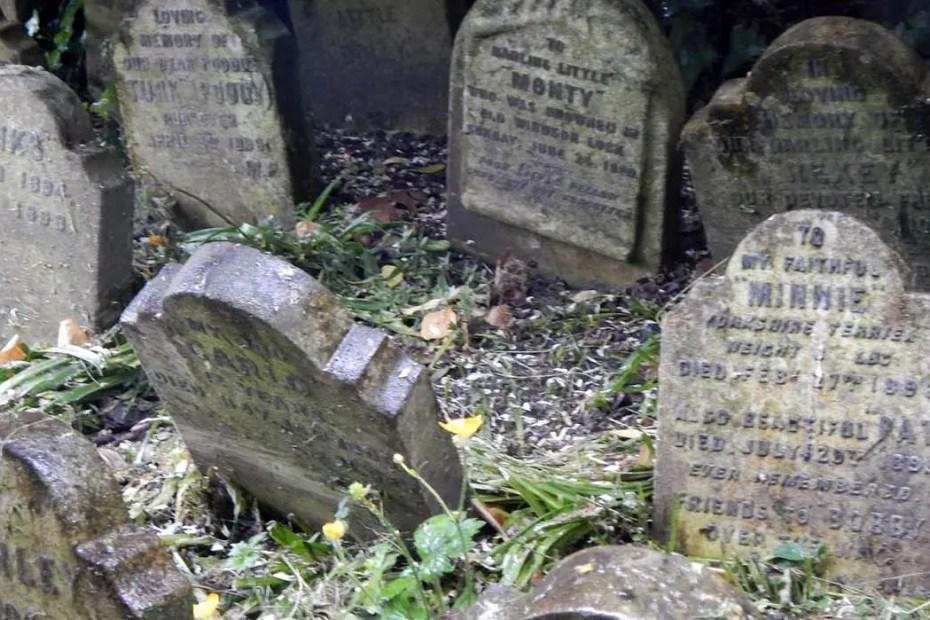 Lápidas en el cementerio de mascotas del Hyde Park.