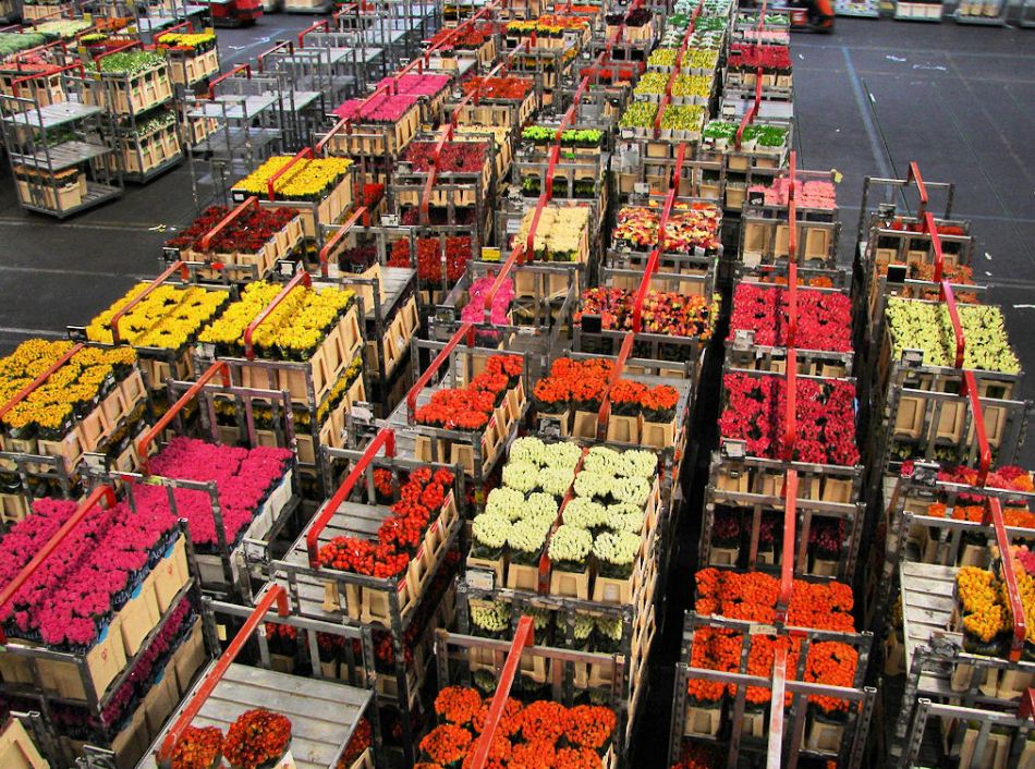 Fotografía del mercado de Keukenhof.
