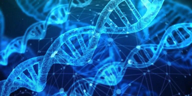Genes estilizados de manera digital.