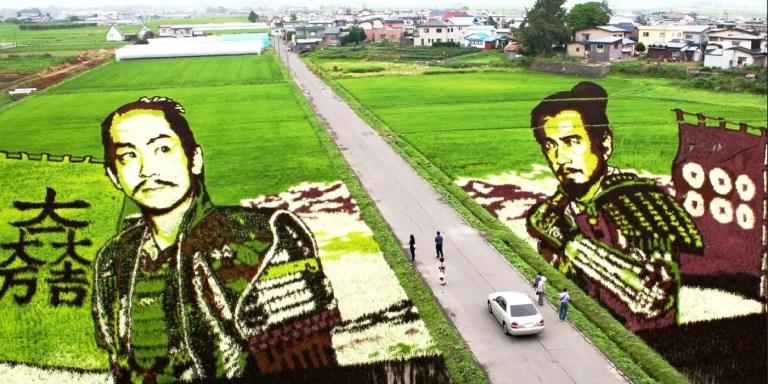 Las gigantescas pinturas vivientes de Inakadate en Japón